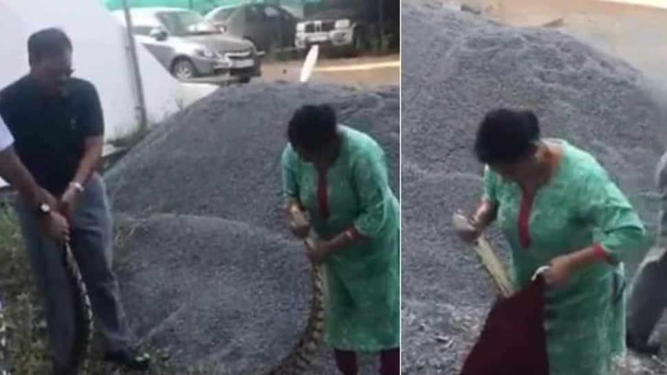 பிளாஸ்டிக் பாட்டிலை விழுங்கிய மலைப்பாம்பு... வைரலாகும் Video!