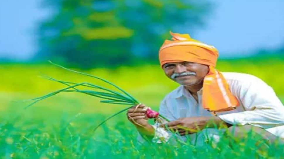 PM Kisan திட்டத்தின் கீழ் இந்த மாநில விவசாயிகளுக்கு மட்டும் 10,000 ரூபாய் கிடைக்கும்: விவரம் உள்ளே!!