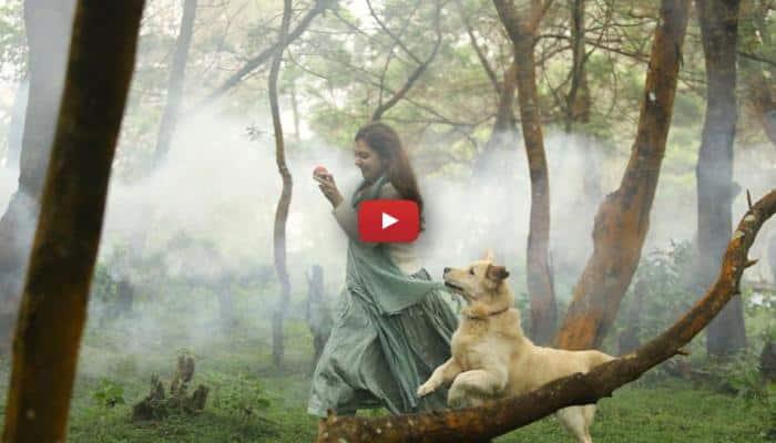4 ஆண்டுக்கு பிறகு சினிமாவில் நஸ்ரியா ரீஎன்ட்ரி! வீடியோ உள்ளே!