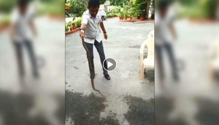 Video: வெறும் கையால் விஷப் பாம்பினை பிடித்து அசத்திய MLA!