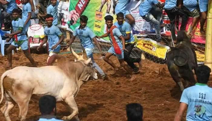 உலக புகழ்பெற்ற அலங்காநல்லூர் ஜல்லிக்கட்டு நிறைவுபெற்றது!
