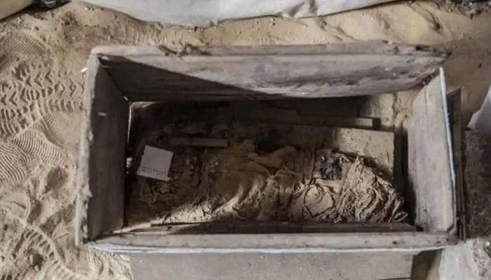 தொல்பொருள் பொக்கிஷமான எகிப்து வெளிப்படுத்தும் புதிய தொல்லியல் உண்மை