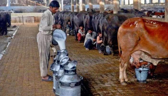 Milk Price Hike: LPG, பெட்ரோல், டீசல் விலையை தொடர்ந்து உயரும் பால் விலை!