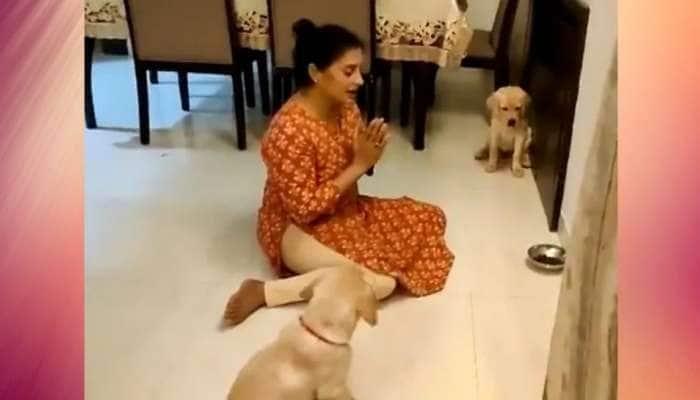 Watch: மனதை கொள்ளைக்கொள்ளும் செல்லப்பிராணிகளின் cute video viral